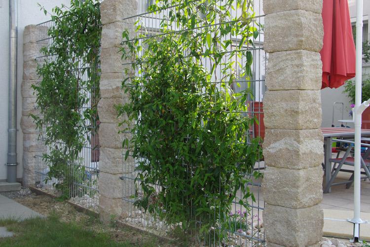 Sichtschutz aus stabmattenzaun mit klassikline pfeilern for Sichtschutz stabmattenzaun